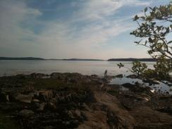 Exploring the rocks at low tide