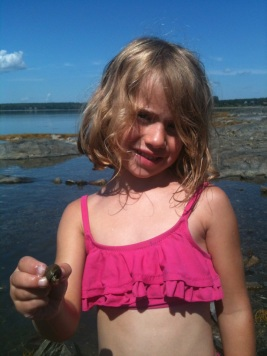 Discovering life in the tidal pools