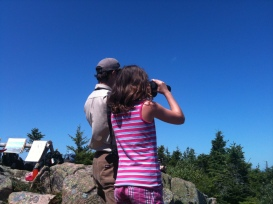 Eagle Watch on Cadillac Mountain