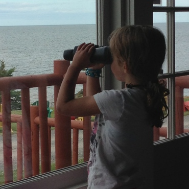 Looking for ferries and seabirds at Pictou Lodge.