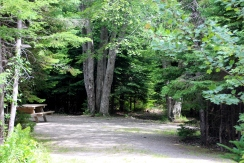 Wooded sites in Caribou Munroe