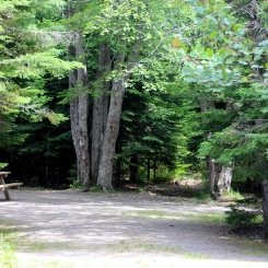 Wooded sites in Caribou Munroe