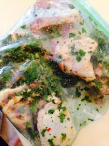 Mojito Chicken marinate in a Ziplock bag prior to departure.