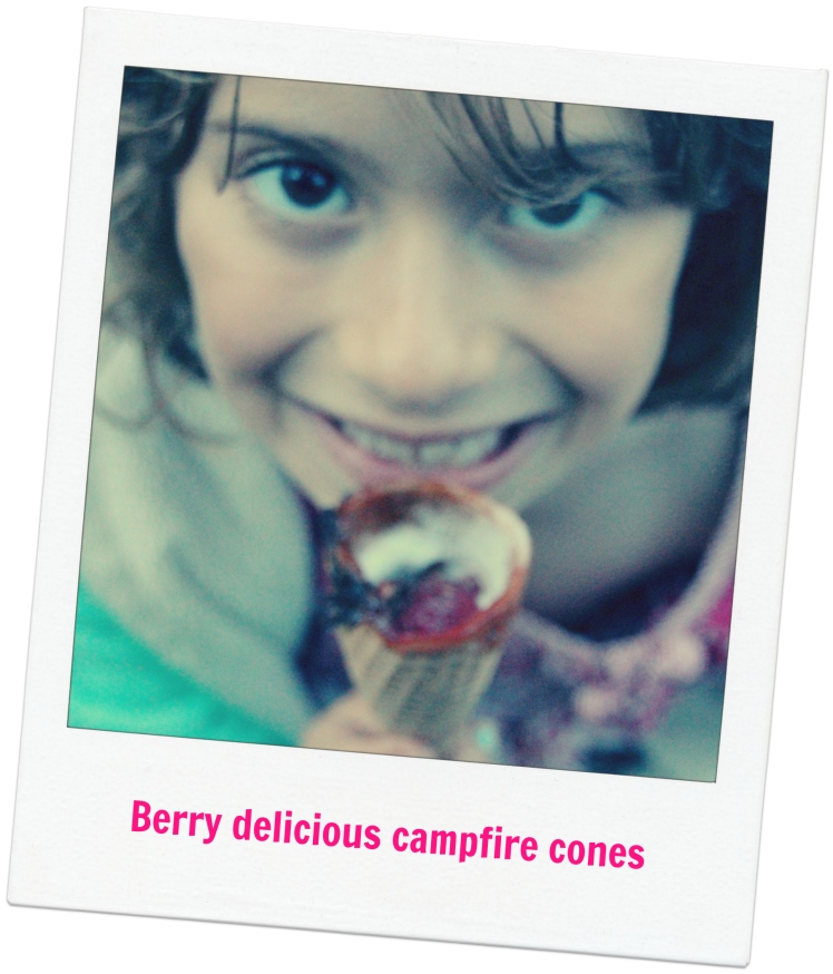 Berry delish campfire cones