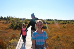 The bog trail in National Park where all the moose meet-up for poker and a pint.