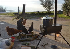 A Frontier stove in action along the seaside.