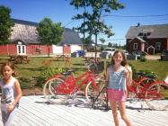Wine Tasting, bike rentals and picnic fare including Foxhole cheeses and crudites.