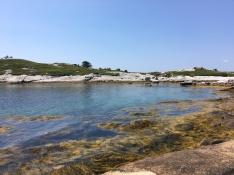 High tide in Cranberry Cove
